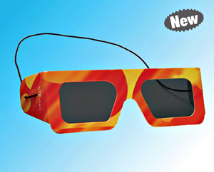 Polarized Goggle (VTE)