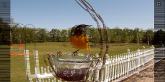 Bernell 3-D Blu-Ray Bird Feeder