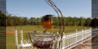 Bernell 3D - Bird Feeder