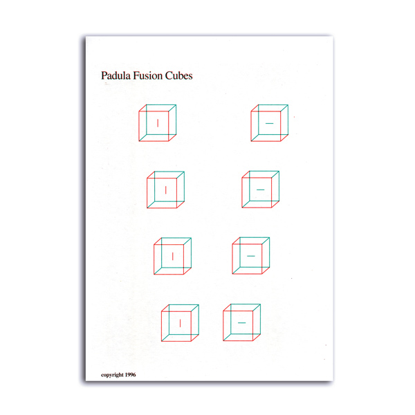 Padula's Fusion Cubes (Set of 2)